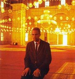 Malcolm X, inspiration